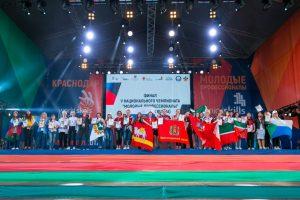 Финал чемпионата «Молодые профессионалы» (WorldSkills Russia) 2017